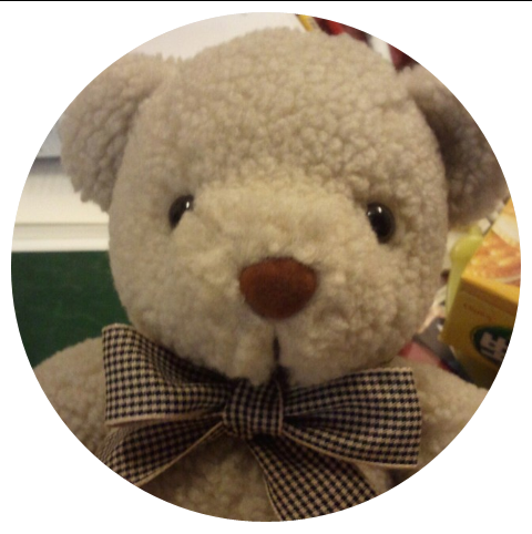 An Adorable Teddy from Seoul, Korea