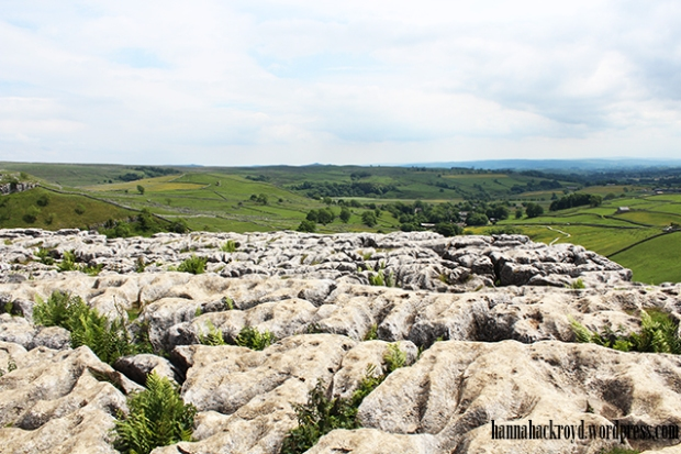 Blog Limestone Pavement